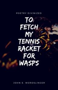 tennisracket-for-wasps1